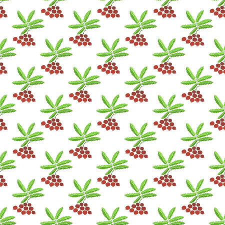 bilberry: Berries seamless pattern - bright vector berry texture Illustration