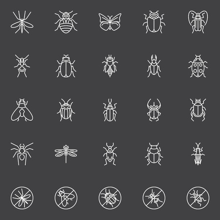 pismire: Insects icons set - vector collection of bugs, flies and beetles in line style on dark background Illustration