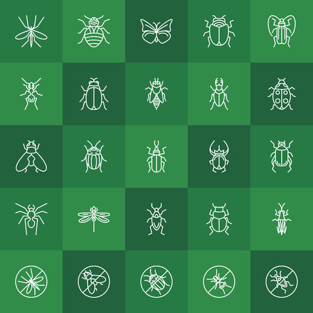ladybug: Insects line icons - vector beetle, bug, fly, ant, bee, ladybug and other insect symbols on green background Illustration