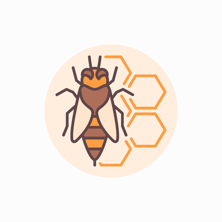 Bee with honeycomb icon. Vector flat honeybee concept symbol. Beekeeping and apiary colorful logo element