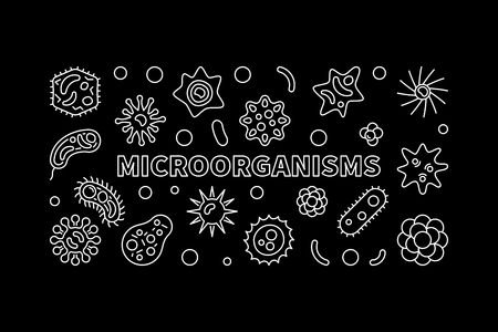 Microorganisms banner. Vector microbiology linear illustration Illustration