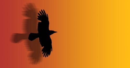 birdsong: a hawk flying with open wings - silhouette - illustration Stock Photo