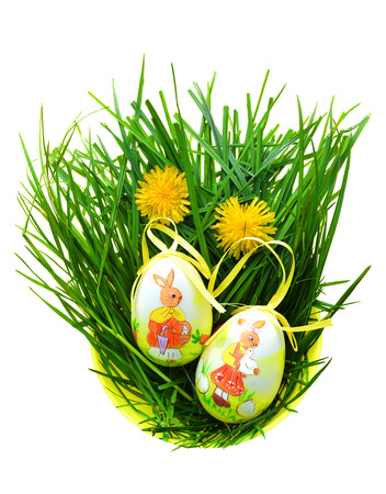 Easter eggs in fresh green grass - isolated on white photo