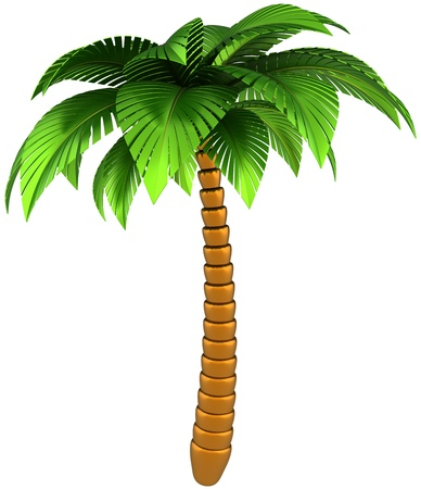 palm: Palm tree stylized tropical nature design element. This is a detailed CG 3d three-dimensional render image. Isolated on white background