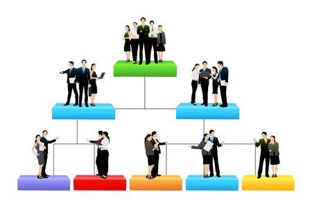 drzewo organizacja o różnym poziomie hierarchii Ilustracje wektorowe