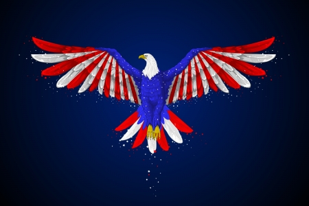 flying stars: Eagle with American Flag Illustration