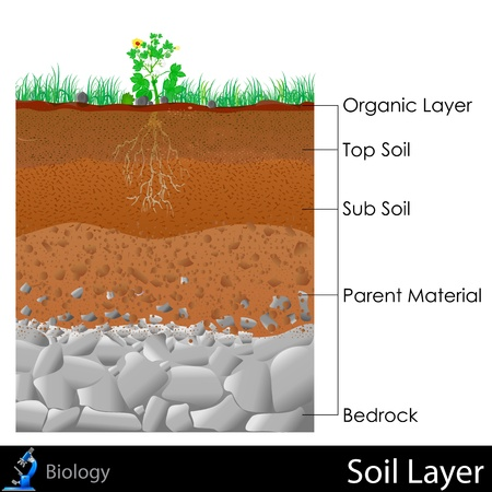 Layer of Soil Vector