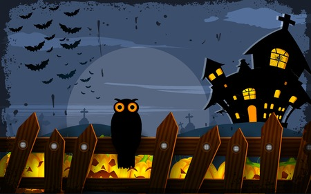 traditional house: vector illustration of Owl sitting on fence in Halloween Night Illustration