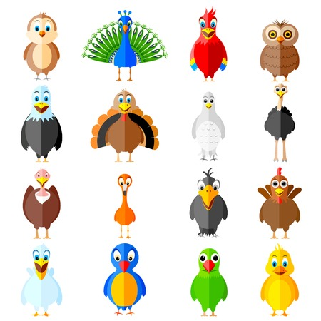 ostrich chick: easy to edit vector illustration of collection of colorful birds Illustration