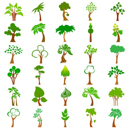 green dates: Tree Collection Illustration