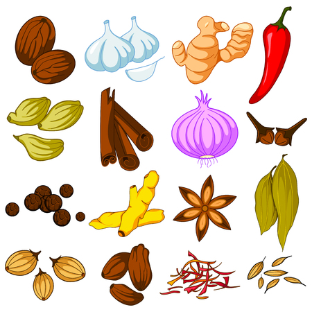 easy to edit vector illustration of different spice variety used in cooking Vettoriali