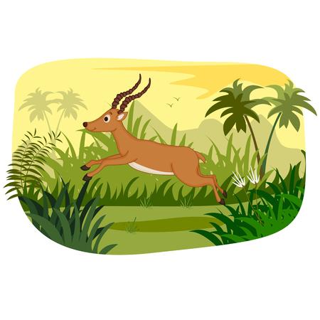 Wild animal Impala in jungle forest background Ilustração