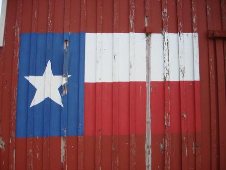 텍사스 깃발