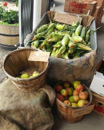 Fall market vegetable
