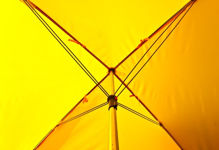 yellow umbrella photo