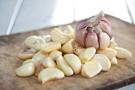 garlic photo