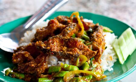 Rice and curry(fried fish) thailand photo