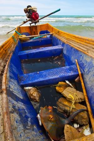 fish in fishing boats on sea photo