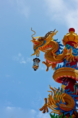 dragon on blue sky background photo