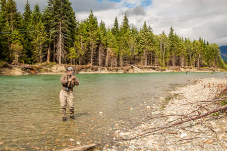 A sport fly fisherman hooked into a salmon on the green Kitimat River, in British Columbia, Canada, with conifer woodland and blue sky in the background
