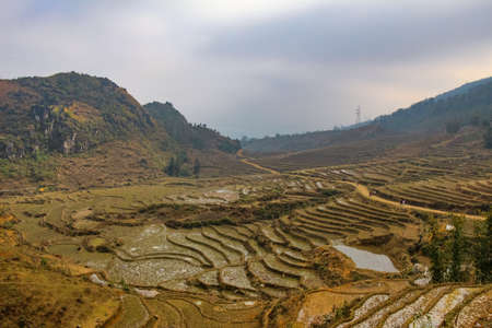 A view over a Vietnamese landscape of rice terraces in winter, Sapa, Vietnam