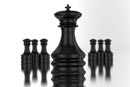 chessmen: Black Chessmen Isolated on White