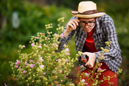 Portrait of young male gardener in straw hat and glasses cut bushes plants