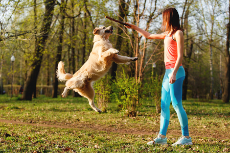 Girl playing with stick , dog Stock Photo