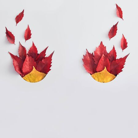 Colorful elm leaves flat lay. Abstract halloween evil mask isolated on white background. Red and golden tree foliage, vivid forest leafage on paper. Bonfire concept. Autumn season flora idea Stock fotó