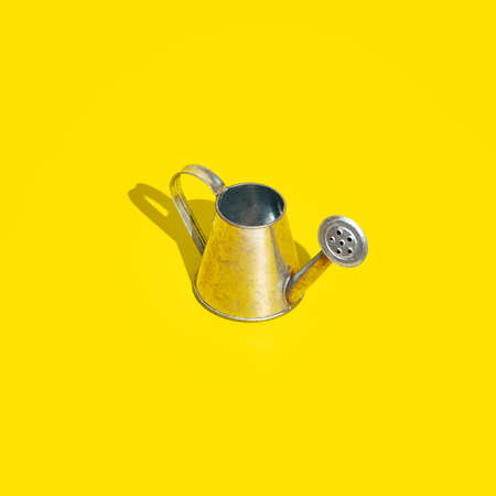 Aluminum watering can on bright yellow background. Minimal bold colored garden background. Gardening, growing, spring or summer concept.