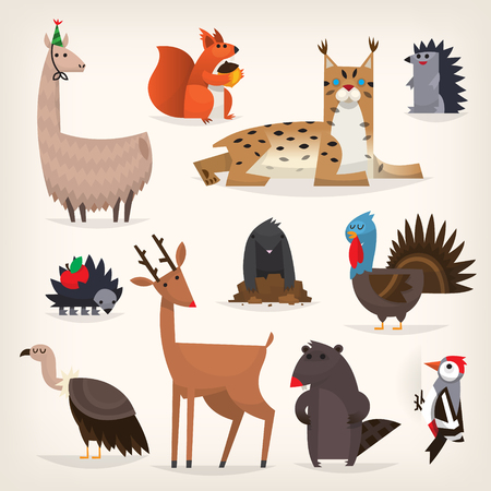 Colorful cartoon highland and midland forest animals animals from torrid and temperate zones