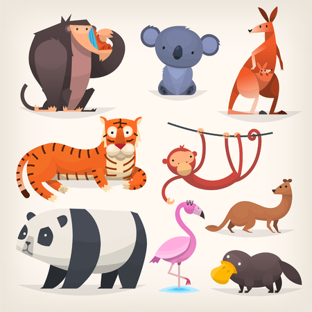Set of popular colorful vector exotic animals and birds