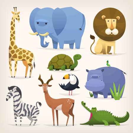 tortuga caricatura: Conjunto de vector coloridos animales y pájaros tropicales populares
