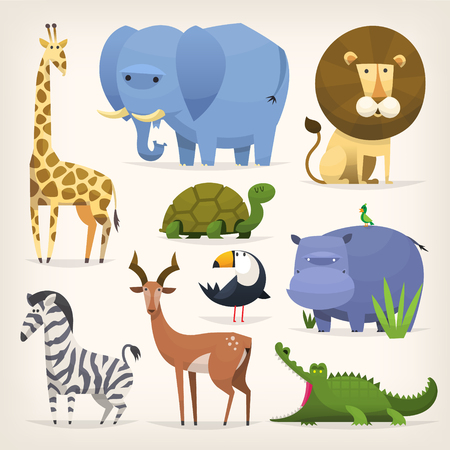 Set of popular colorful vector tropical animals and birds