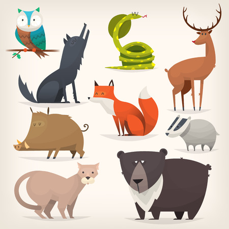 predators: Set of popular colorful vector forest animals and birds