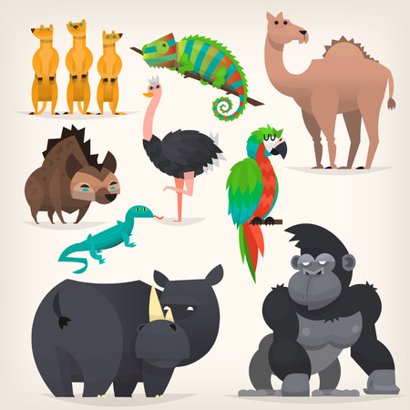 Colorful cartoon animals from tropical region and african desserts