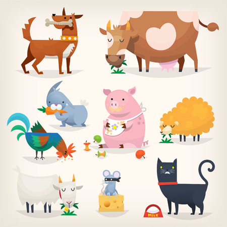 Set of popular colorful vector farm animals and birds eating food Stock Illustratie