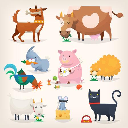 Set van populaire kleurrijke vector boerderijdieren en vogels eten eten Stock Illustratie