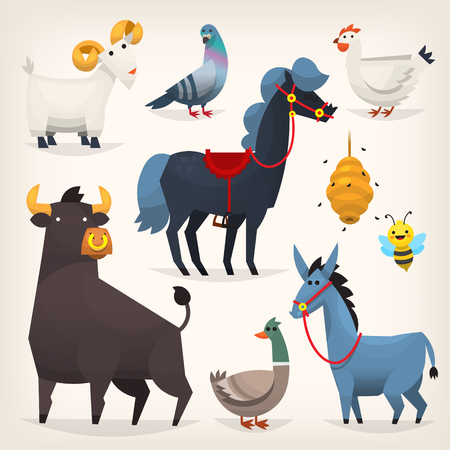 house donkey: Set of popular colorful vector farm animals and birds Illustration