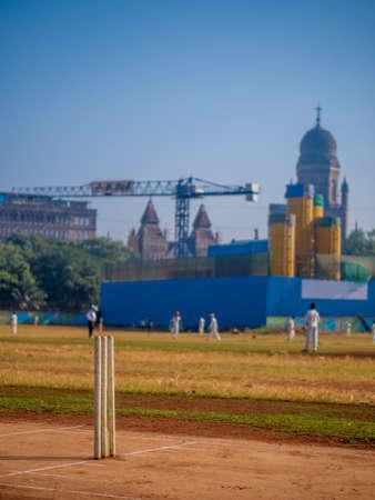 Cricket Stumps at cricket ground