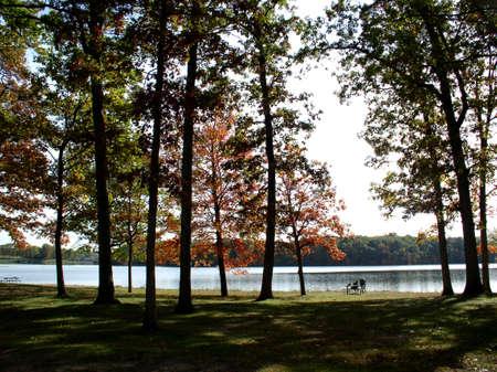 Autumn Scene Near lake Shore photo