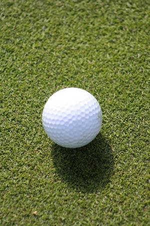 ボールの影で草を置くことにゴルフ ・ ボール