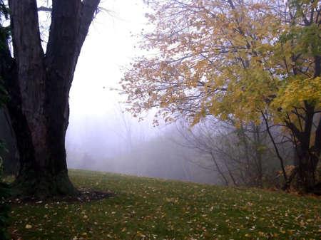 Foggy Day Stock Photo - 1768215