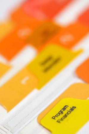program financials tabs in a bussiness folder photo