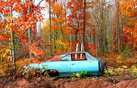 wrecked: Wrecked car and colorful trees during autumn time Stock Photo