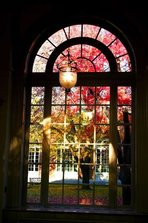 view through: View Through Window