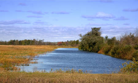 Scenic landscape of wet lands showing small lake and trees