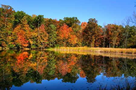 Colorful Autumn Landscape photo