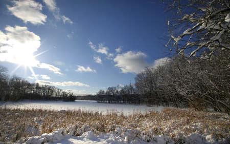 lanscape: Winter Landscape