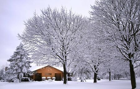 white winter: Cabin In The Woods Stock Photo